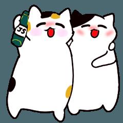 [LINEスタンプ] 2匹の猫のティキタカ