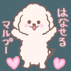 [LINEスタンプ] 話せる子犬のマルプー