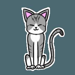 [LINEスタンプ] サバトラ白猫スタンプ